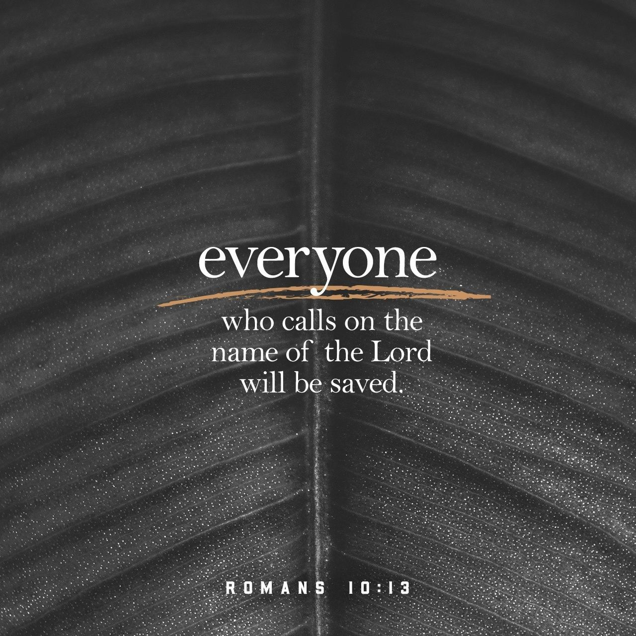 Everyone Who Calls On The Name Of The Lord Will Be Saved