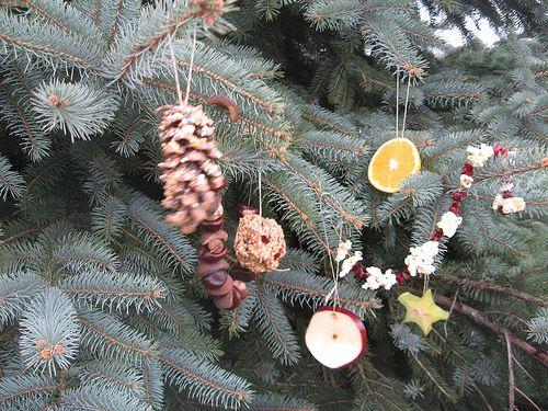 outdoor christmas tree w dried fruit popcorn for the birds - Outdoor Christmas Tree Decorations For Birds