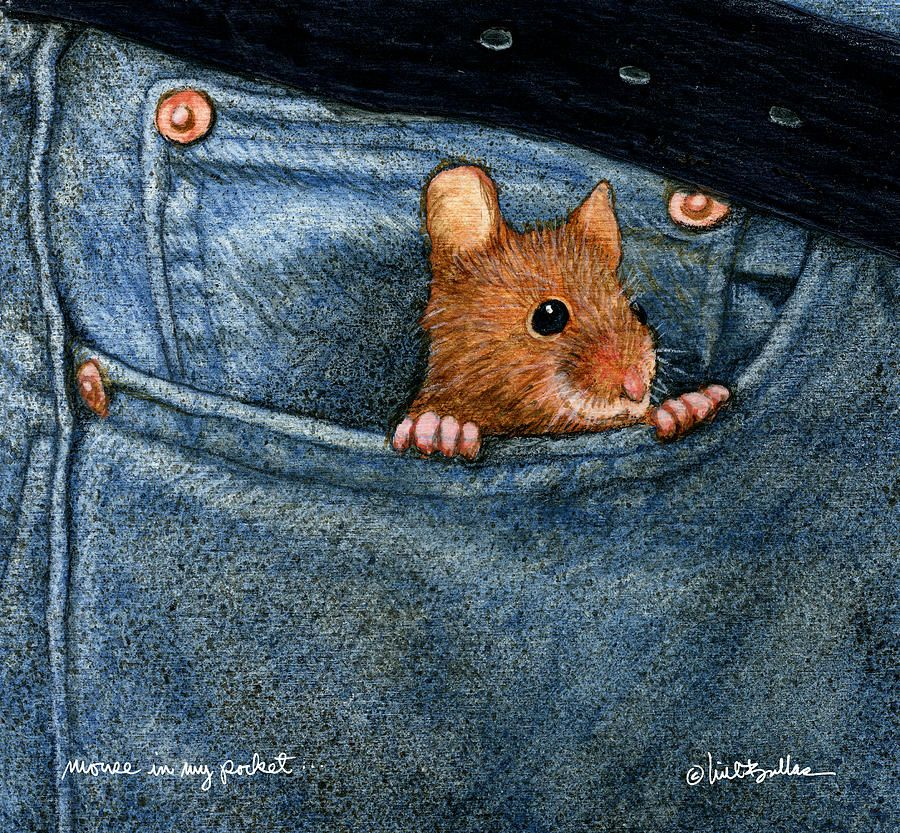 Mouse In My Pocket... by Will Bullas