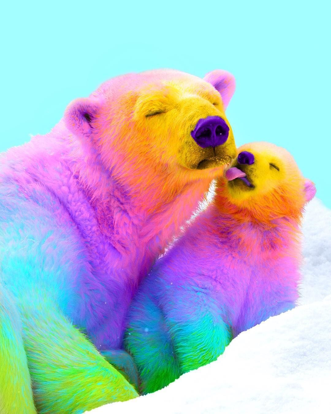 Pin By Everything On Rainbow Cute Animals Cute Baby Animals