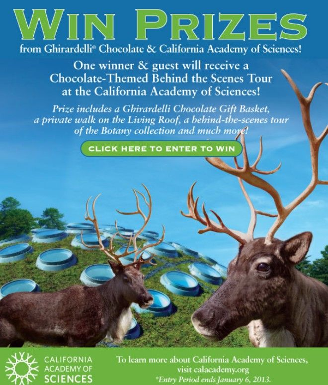 Ghirardelli Chocolate Company S 2012 California Academy Of Sciences Holiday Sweepstakes Holiday Sweepstakes California Academy Of Sciences Ghirardelli