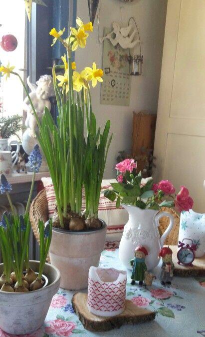 Zeit zwischen Winter und Frühling. ..