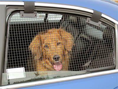 Breezeguard Metal Car Window Guard Screens Dog Safety Dogs Dog