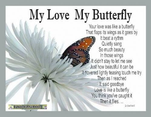 pictures and phrases of butterflys Butterfly Quotes