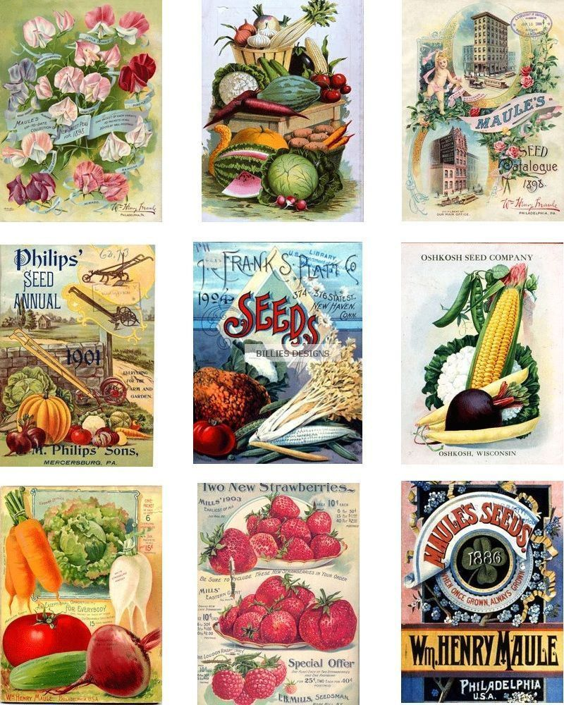 Vintage Seed Packet Digital Download Collage Sheet