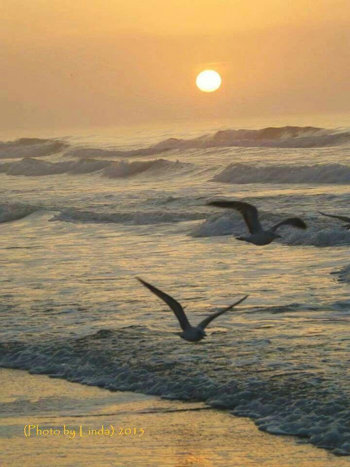 Beautiful Ocean!