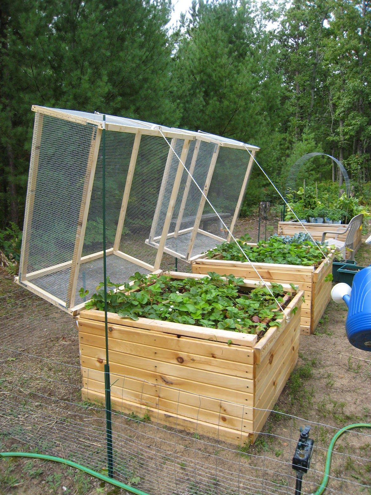 How To Build A Raised Strawberry Bed Garden Design Ideas
