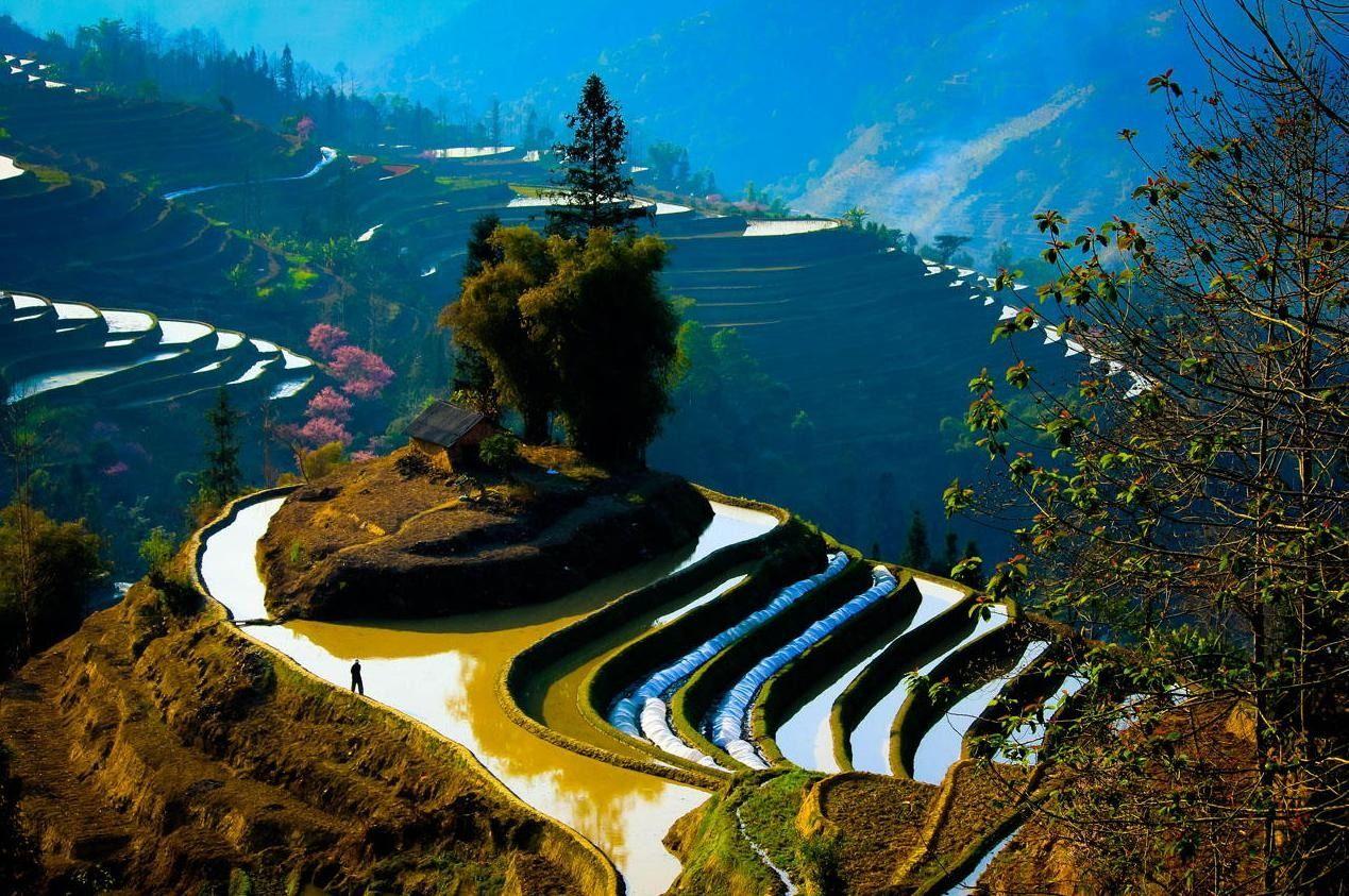 Yuanyang rice terraces, China.