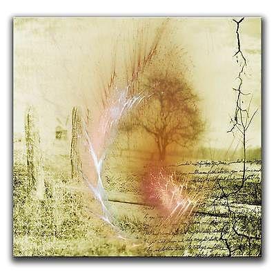 60x60cm paul sinus art abstrakte leinwand bilder fraktale kunst bild farbe top fotoleinwand großformat malen nach zahlen
