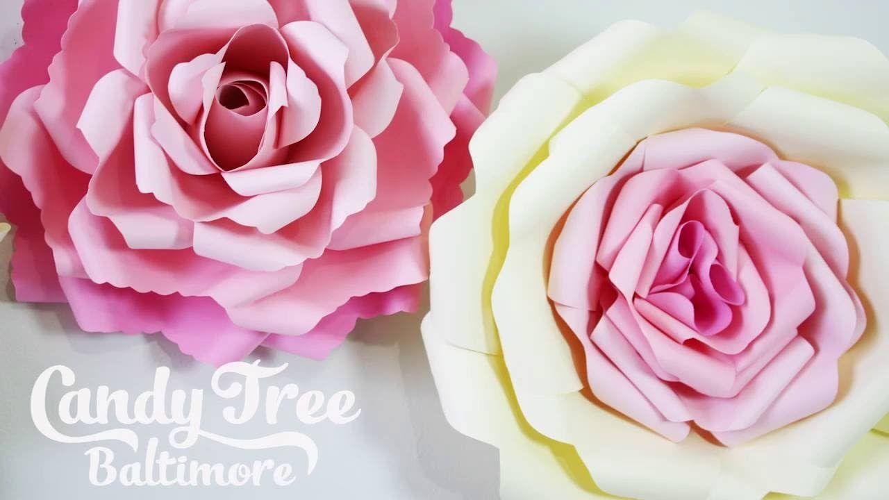 DIY Paper rose backdrop tutorial Lesson   rose backdrop