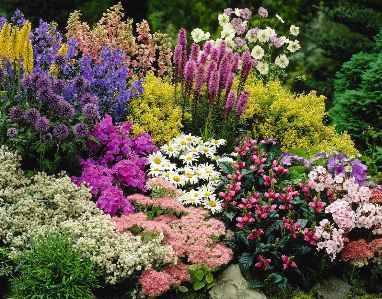10 Cheap Flower Garden Project Ideas Simphome In 2020 Flower Garden Design Small Flower Gardens Colorful Landscaping