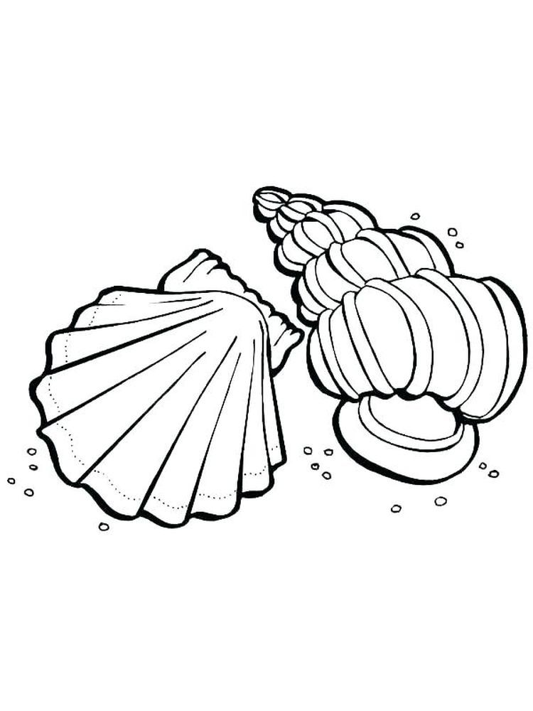 Printable Coloring Page Of Sea Shell Shell Coloring Page To Download And Coloring Here Is A Fre In 2020 Animal Coloring Pages Coloring Pages Printable Coloring Pages