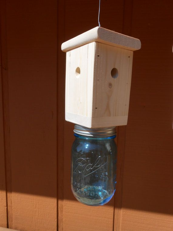 1 Carpenter Bee Trap Wood Boring Bee Trap Including 1 Blue