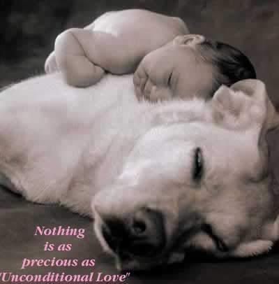 "Nothing is as precious as ""Unconditional Love""...   Your pet or pets is a furry loved one.  Love is **Beautiful**."