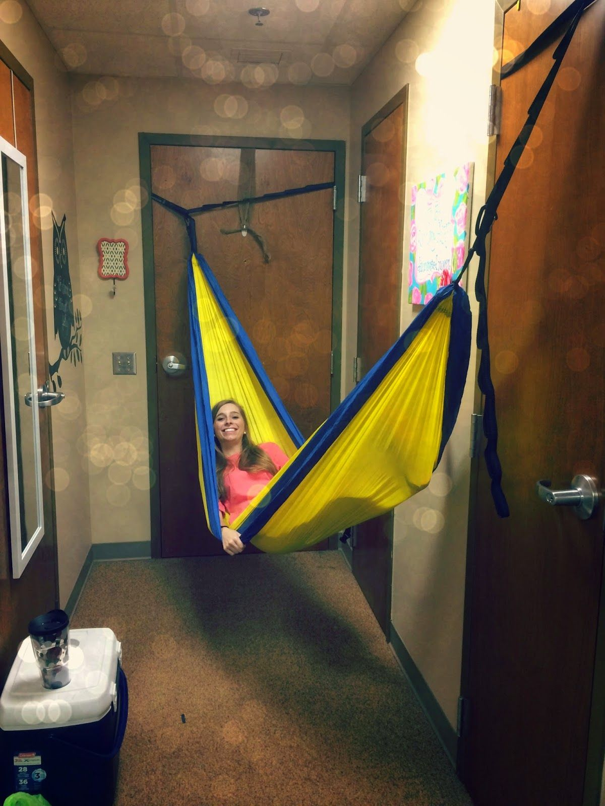 My Life As Hayden Bringing Outdoors In How To Eno Your Dorm Room