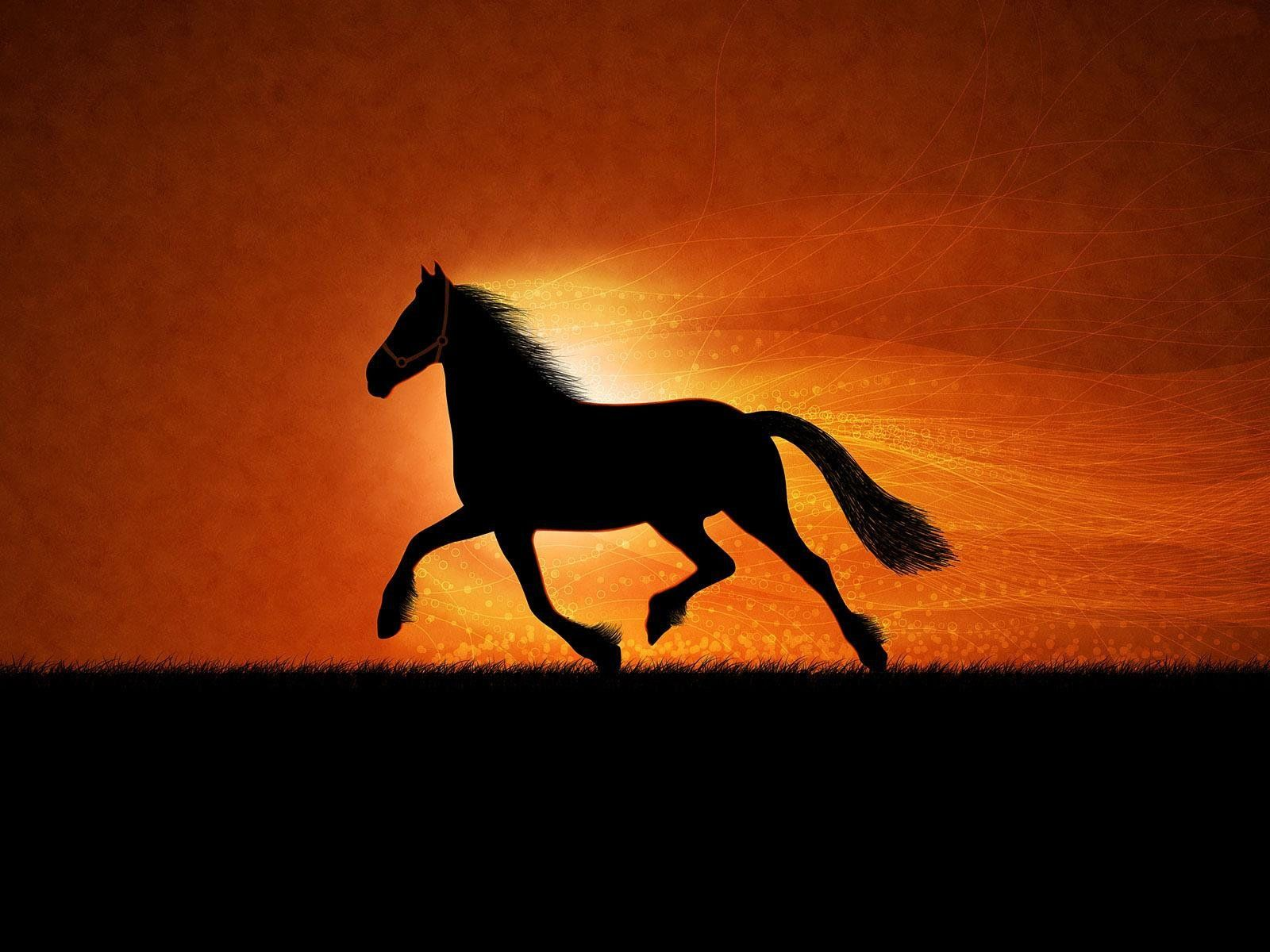 Beautiful Wallpaper Horse Iphone 5c - 22474677759e5b1e791e15f6da82de0a  Picture_93754.jpg