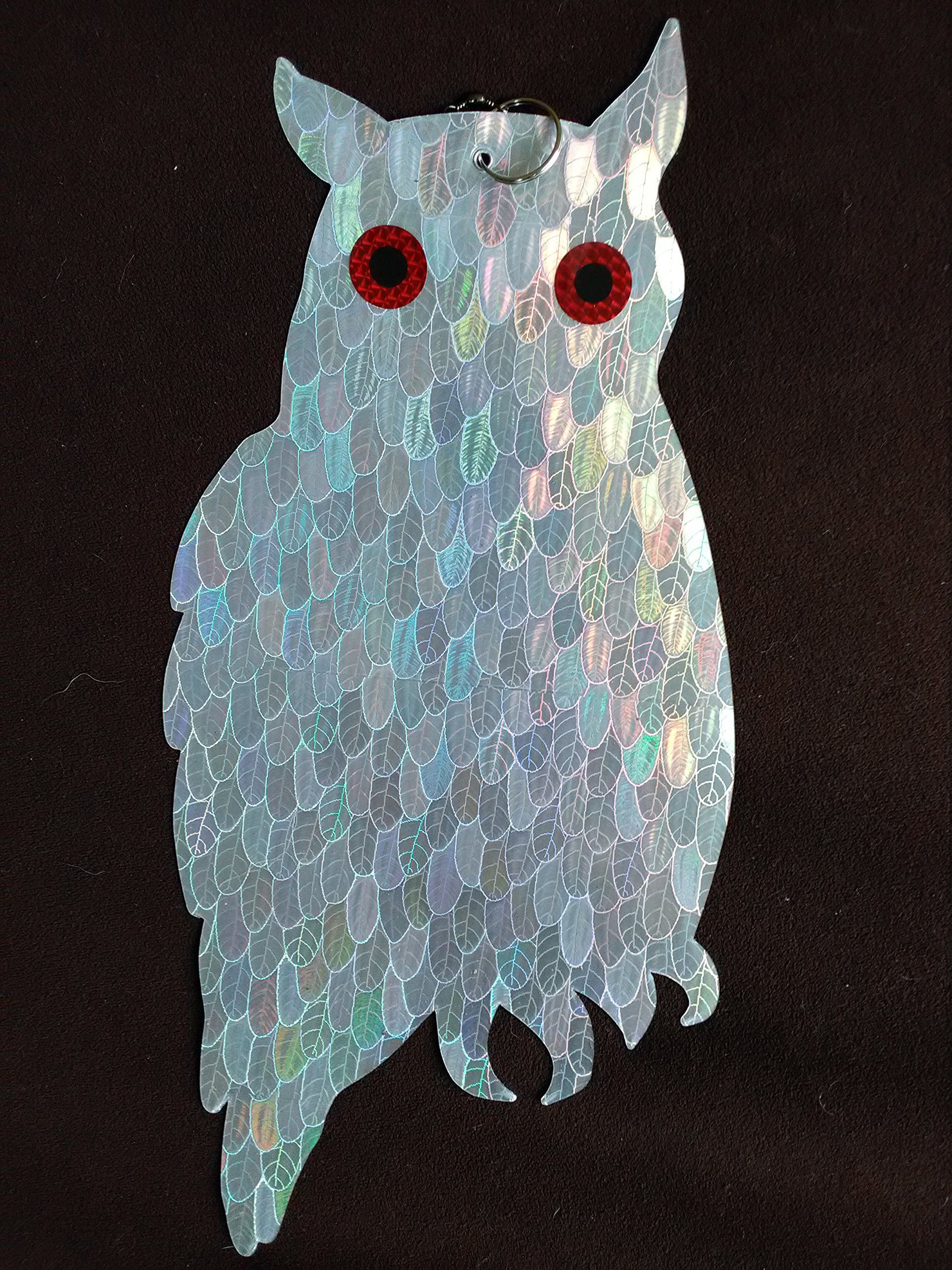 Birdbusters Holographic Owl Bird Deter Scares Birds Away From Buildings Patios Balconies And Gardens
