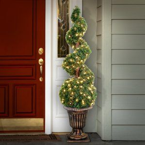Image Result For Topiary At Front Entrance Spiral Tree Potted
