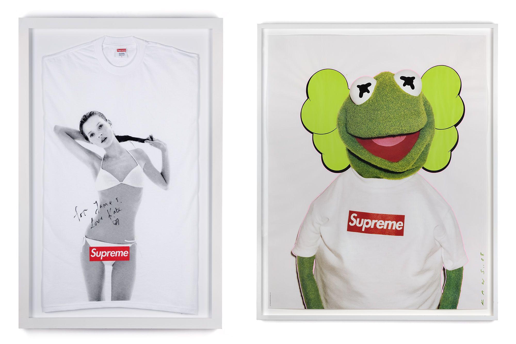 Canvas Kermit the Frog Supreme Model Fashion Style Art Print Poster