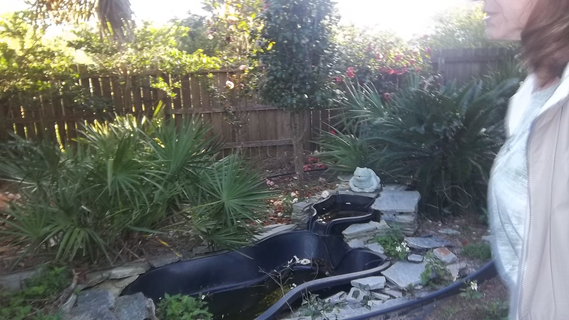 Future Project For My Southern Zen Gardenreplace The Pump In
