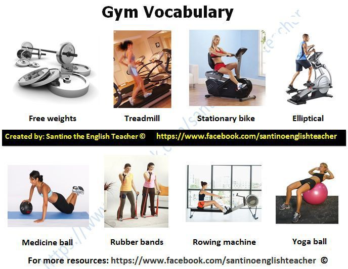 Gym Vocabulary What Kind Of Exercises Do You Like To Do At The Gym And How Often Do You Go