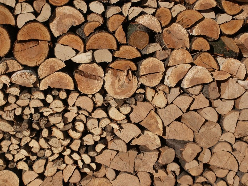 With more people choosing wood burning stoves and fires to heat their homes, sourcing green wood is becoming increasingly popular because it is considerabl