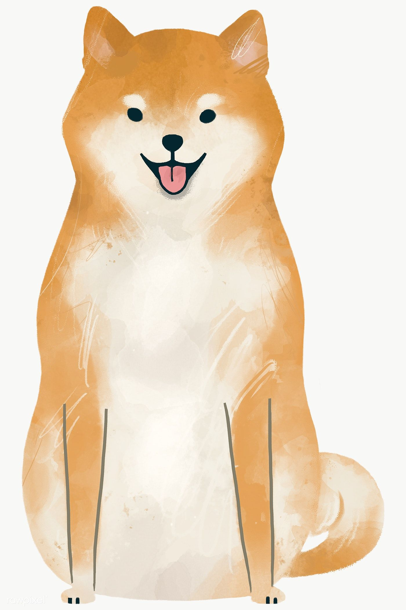 Shiba Inu On A Beige Background Transparent Png Premium Image By Rawpixel Com Nunny