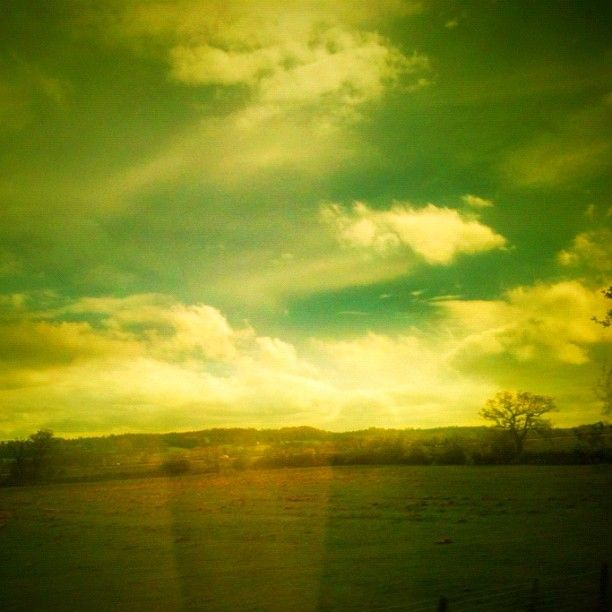 #trees #landscape #doubleexposure #hdr #photography #iphoneography #iphone #clouds #sky #happyaccident #plain #yellow #green