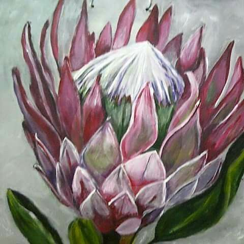 Proteas Protea Art Watercolor Flowers Paintings Flower Painting