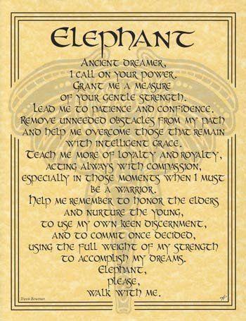 Elephant Prayer Poster Bos Book Of Shadows Elephant Spirit Guides