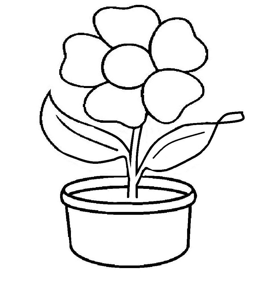 Sketsa Gambar Bunga Dalam Pot Cute766