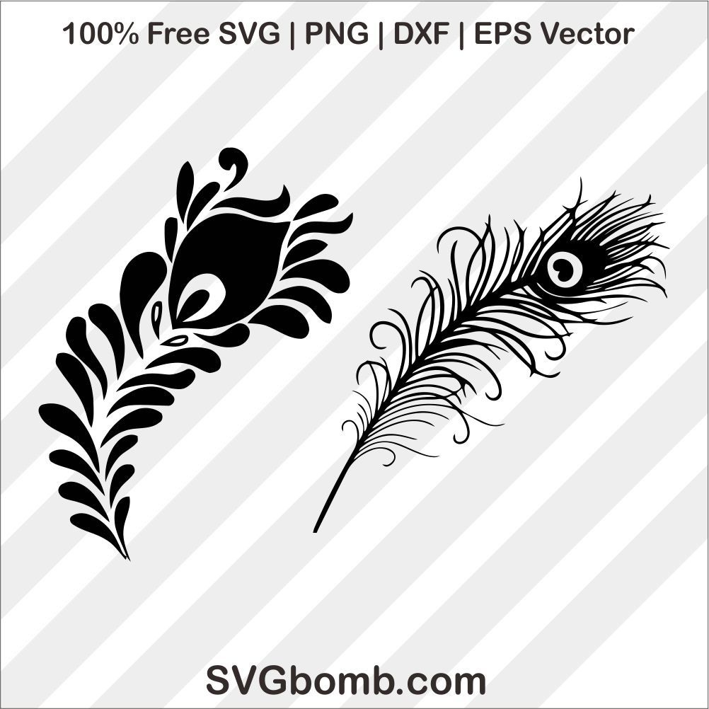 Peacock Feather Black Silhouette Black Silhouette Feather