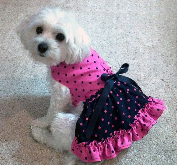 Pink & Black Dog Harness Dress with Contrasting by WaggleWear