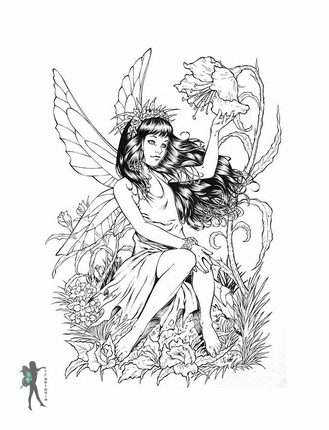 Fairy Coloring Pages For Adults | Enchanted Designs Fairy & Mermaid ...