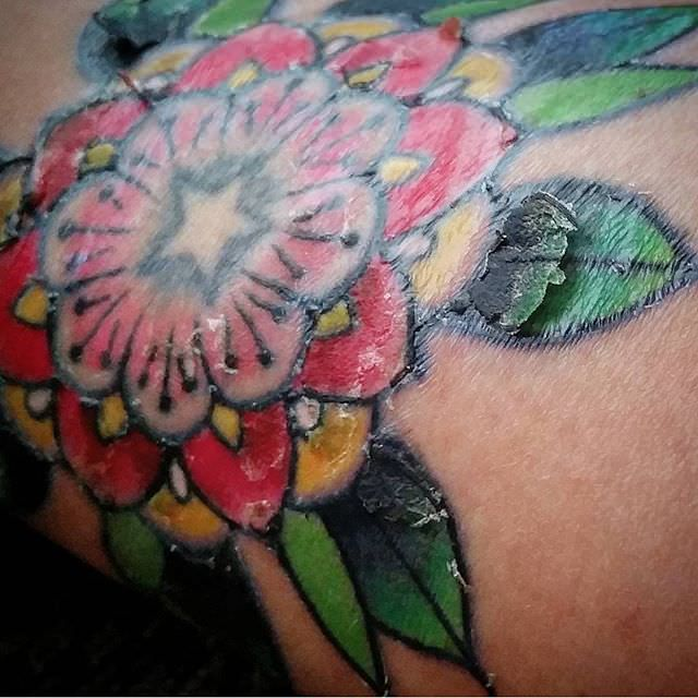 Peeling Tattoo Tattoo Scabbing Tattoo Peeling Tattoos