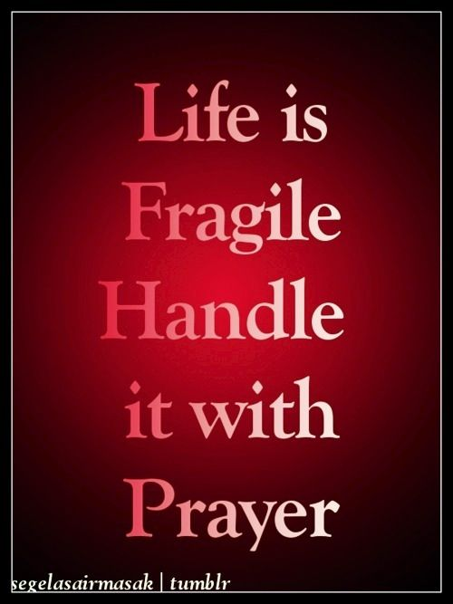 Life is fragile
