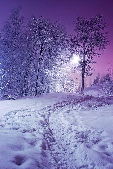 pretty snow at night