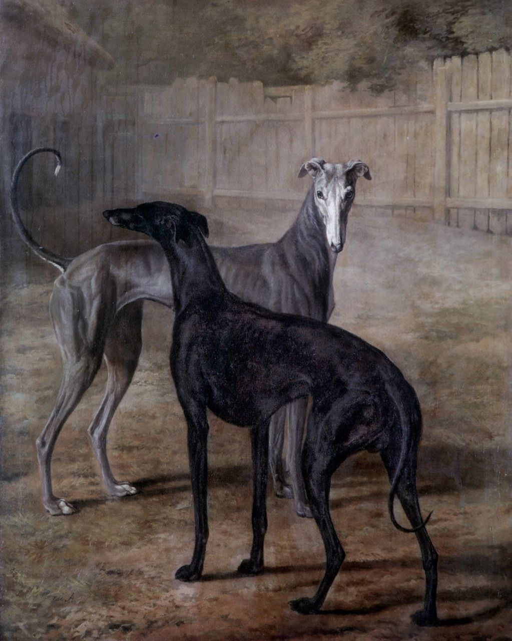 Jacques Laurent Agasse Rolla And Portia 1805 Greyhounds Dogs