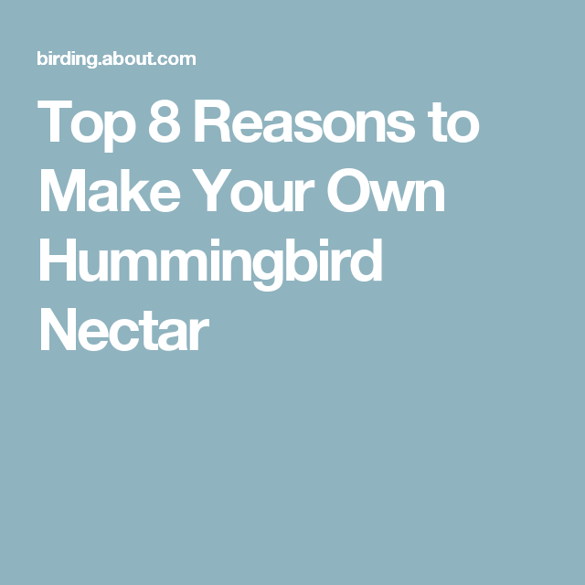 Top 8 Reasons to Make Your Own Hummingbird Nectar