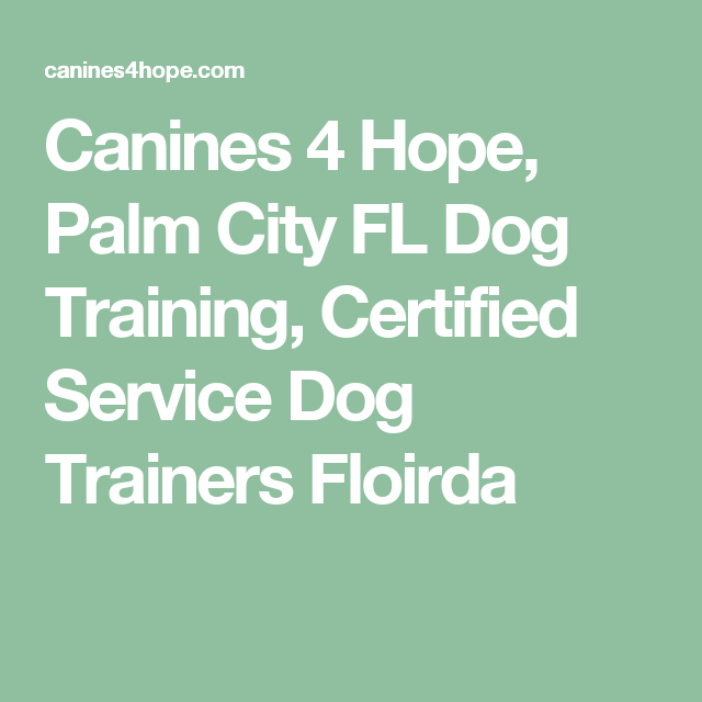 Canines 4 Hope Palm City Fl Dog Training Certified Service Dog