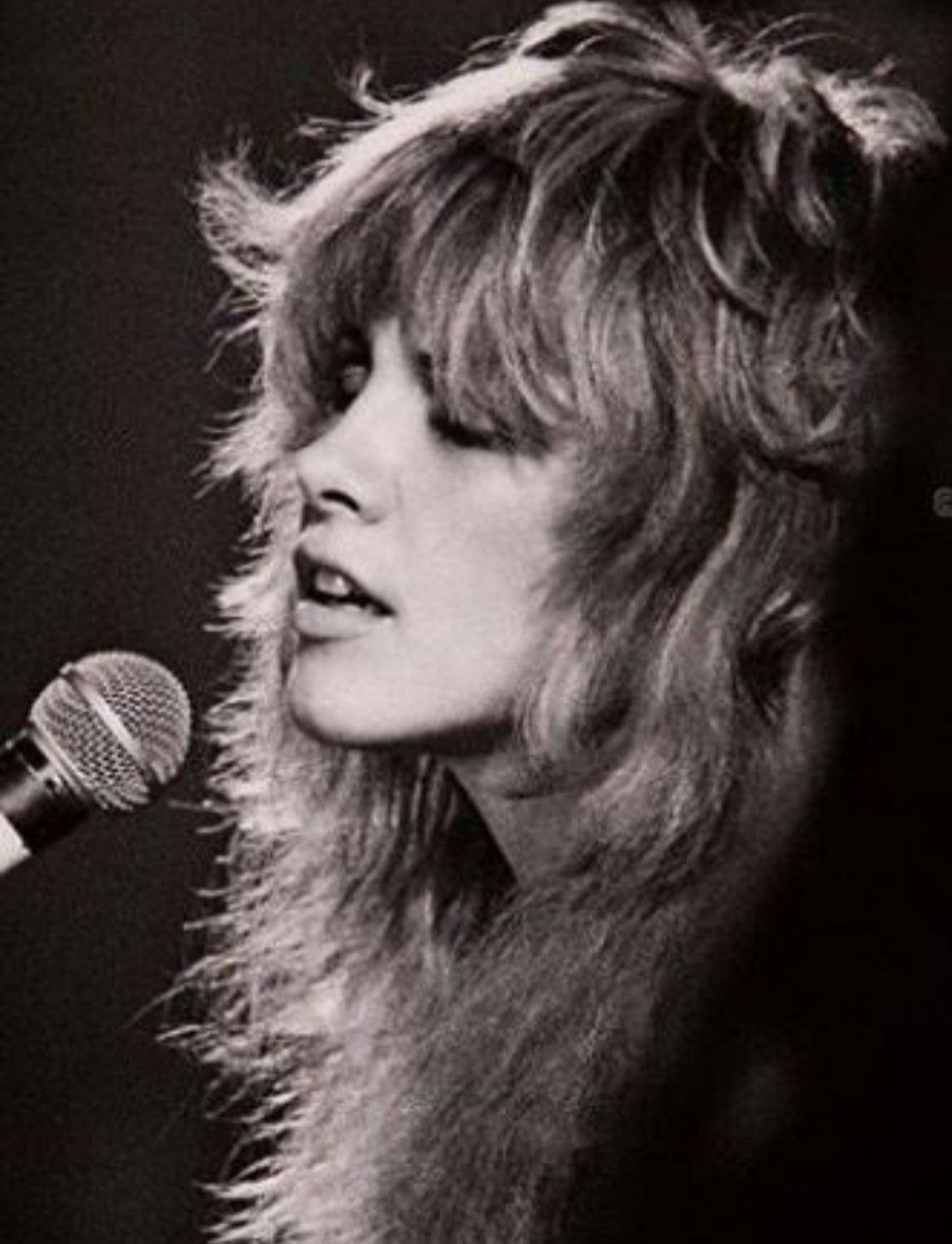 I Love This Photo 70 S Stevie Stevie Nicks Fleetwood Mac Stevie Nicks Stevie Nicks Style