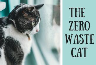 Zero Waste Cat A Complete Checklist Katzen Kaufen Katzen
