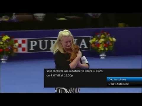 Dog gets away from handler at the National Dog Show She cries about it - http://dogscentral.net/dog-gets-away-from-handler-at-the-national-dog-show-she-cries-about-it/
