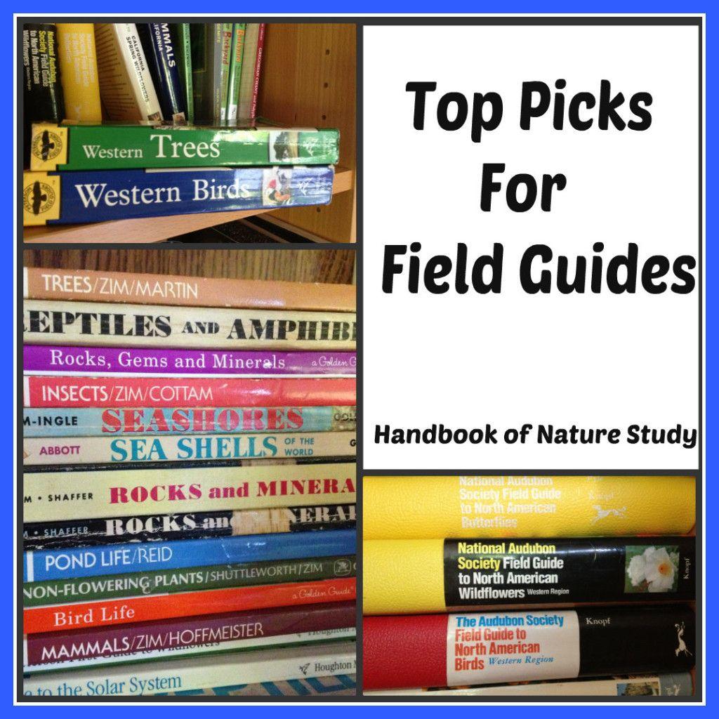 Top Picks For Field Guides Handbookofnaturestudyspot