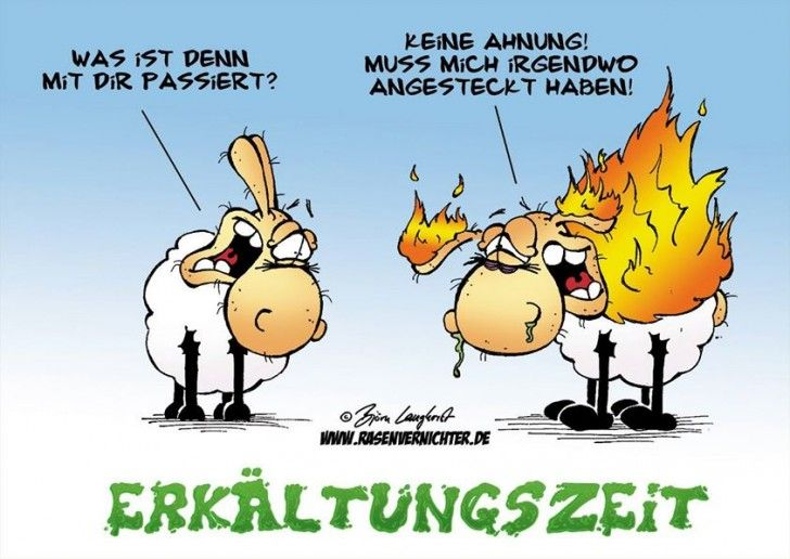 Erkältung | Cartoon | Funny, Humor und Jokes