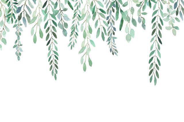 Pin by OwenMoli on Illustrations Succulent,leaf,botanical ...