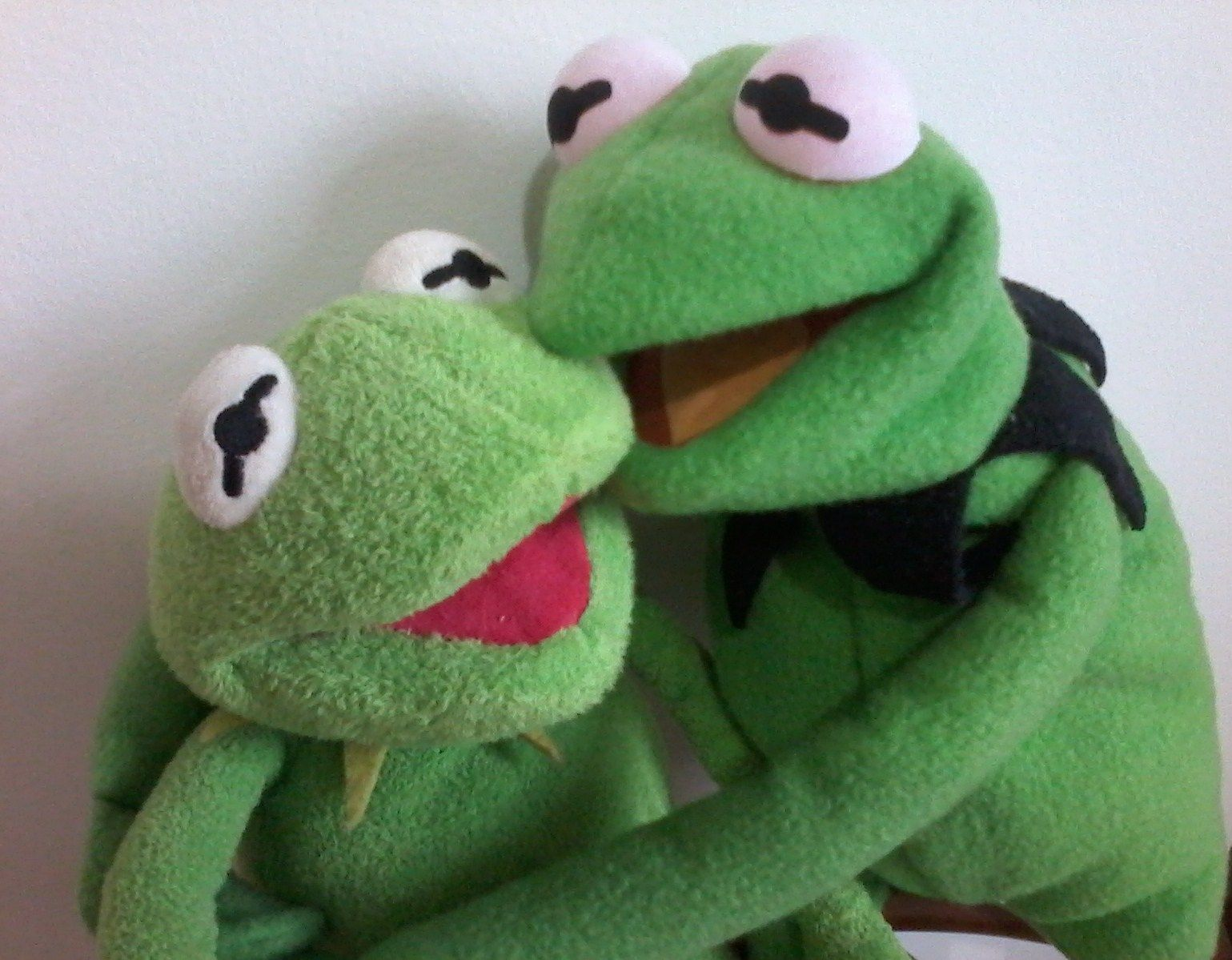 Funny Kermit The Frog: Kermit And His Friend Kermit