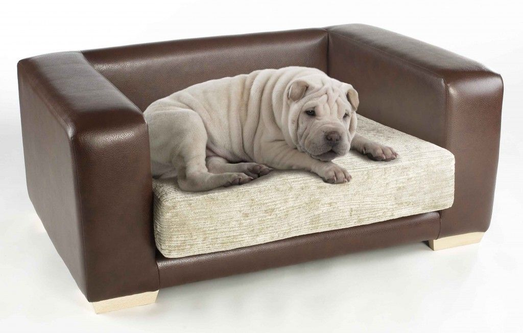 Merveilleux Fancy Dog Beds For Large Dogs