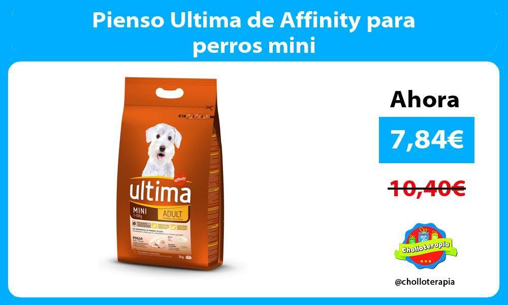 Pienso Ultima De Affinity Para Perros Mini Mini Perros Mini