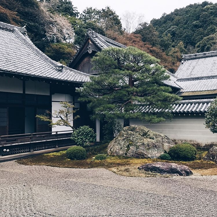 Jardines japoneses #zen #japanesegarden #kyoto Cool art stuff